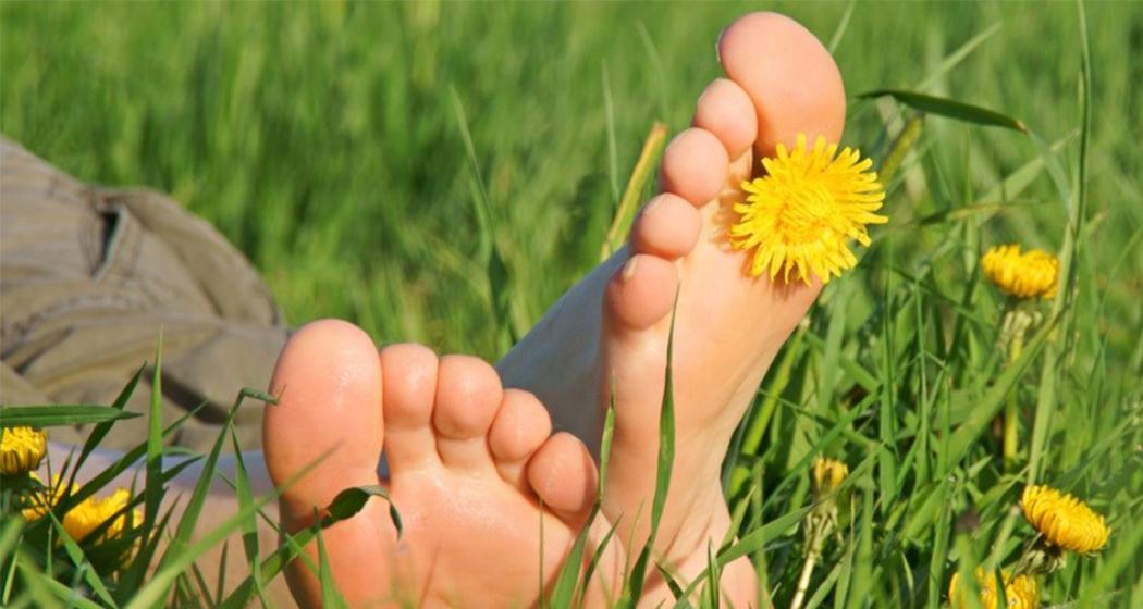 10 benefícios que o contato com a natureza traz para a sua saúde